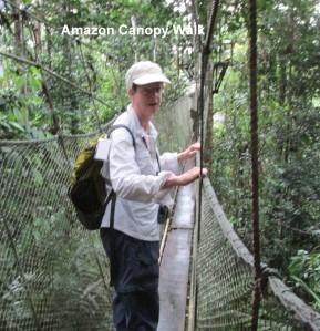 Amazon Canopy-161-cropped